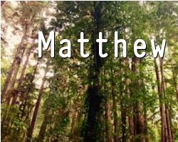 The Gospels: Matthew 20